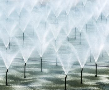 spray-pond-01-arvores